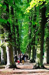 Spaziergänger in der Lindenallee vom Hirschpark in Hamburg NIenstedten.