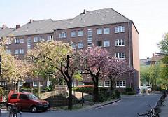 Frühling in Hamburg - Blüte Japanische Zierkirschen, blühende Strassenbäume - Architektur Wohnblock Koldingstrasse.