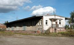 Schuppen ehem. Gueterbahnhof HH-Harburg, Wildkraut (2005)