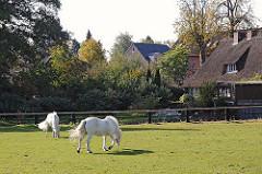 Fotos Pferdewiese in Duvenstedt