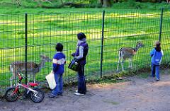 Kinder am Damwildgehege vom Hirschpark - Bilder aus dem Hamburger Stadtteil Nienstedten.