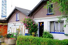 Wohnhäuser am Reiherstieg - Kletterrose mit roten Blüten an der Hauswand - im Hintergrund ein Kran einer Werft in Hamburg Wilhelmsburg.