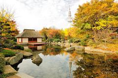 Herbst in Hamburg - Japanischer Garten Teehaus und Fernsehturm in Planten un Blomen; Herbstbäume in prächtigen Farben - Indian Summer / Goldener Herbst.