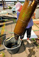 Die Reuse wird von dem Fischer geleert, die Aale in eine Bünn befördert.