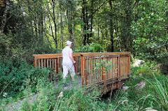 Holzbrücke über die junge Alster in Henstedt-Rhen, Nordic Walkerin auf dem Alsterwanderweg.