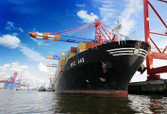 Das Containerschiff MSC ANS unter den Containerbrücken im Hamburger Hafen - Waltershof; im HIntergrund die Containerbrücken am Burchardkai.