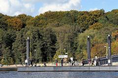 Schiffsanleger Hamburg Wittenbergen - Wald in Herbstfärbung, Stadtteil Rissen - Bezirk Altona.