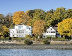 Villen am Elbufer Elbvorort - Bezirk Hamburg Altona; Herbst in Hamburg - Bäume mit Herbstlaub.