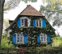 Einzelhaus mit blauen Fensterluken aus Holz - Fassade mit Efeu bewachsen - Elbvorort Iserbrook.