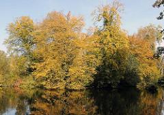 Herbststimmung am Wohldorfer Wald.