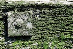 Tragender Holzbalken der ehem. historische Wassertreppe 51 in der Billwerder Bucht in Hamburg Moorfleet - der Landungssteg ist um 1912 entstanden und diente Binnenschiffen als Anleger. 2008 ist die Wassertreppe trotz Proteste endgültig abgerissen wor