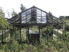 Altes Treibhaus - aufgegebenes Glashaus - Gras und Gestrüpp überwuchert das GEbäude.