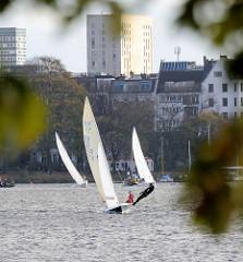 Blick durch Herbstblätter über die Aussenalster Richtung Hamburg St. Georg, Strasse An der Alster; Segelboote mit weissen Segeln fahren im Wind.