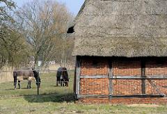Scheune mit Strohdach - Fachwerkkonstruktion - grasende Pferde auf der Wiese.