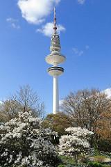 Hamburger Fernsehturm Planten un Blomen im Frühling