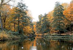 Wallanlagen in der Hamburger Innenstadt - Herbstbäume am Ufer des Wallgrabens - Fotos aus Planten un Blomen.