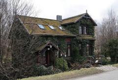Mit Efeu bewachsenes Einzelhaus - Moorfleeter Deich - Treppengeländer zum Hauseingang.