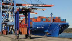 Containerfrachter PUELCHE am HHLA Terminal Burchardkai - ein Vancarrier mit Container fährt auf der Kaianlage des Hafen Hamburgs.