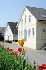 Wohnhäuser an der Deichstrasse im Hamburger Stadtteil Cranz - Tulpen blühen auf dem Deich.