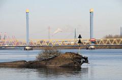 Wrack mit Sträuchern bewachsen - Suederelbe vor Moorburg, Kattwykbrücke.