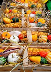 Landmarkt / Herbstmarkt in Hamburg Bergedorf - Körbe sind mit Kürbissen und Mais als Herbstdeko gefüllt.