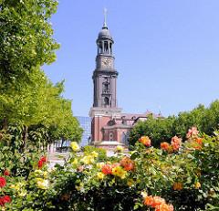 Hamburger Hauptkirche St. Michaelis - der Michel, Hamburger Wahrzeichen; Beet mit blühenden Rosen.