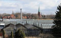Gläserne Treibhäuser in HH-Moorfleet - Wohnhäuser bei der St. Nikolaikirche.