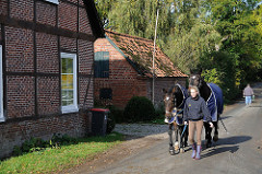 Fachwerkhäuser - Pferde auf der Schaeferkoppel.