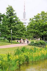 Grünanlagen in Hamburg - Park in der Hamburger Innenstadt - Planten un Blomen; im Hintergrund der Telemichel / Fernsehturm.