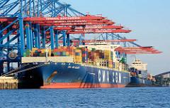 Frachtschiff CMA CCGM CALISTO unter den Containerbrücken vom HHLA Container Terminal Burchardkai im Hamburger Hafen. Das Containerschiff hat eine Tragfähigkeit von 128 760 t und eine Länge von 363 m; der Frachter kann 11400 Container TEU an Bord nehm