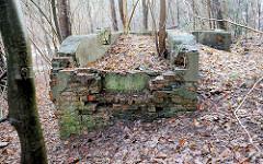 Fundamente der Kohlewäscherei vom Bergwerk Hausbruch / Bergwerk Robertshall  in den Harburger Bergen - Förderung von Braunkohle für die Harburger Phoenix-Werke von  1919 - 1922.