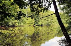 See Hörndiek in Hamburg Bergstedt; Bäume stehen dicht am Seeufer.