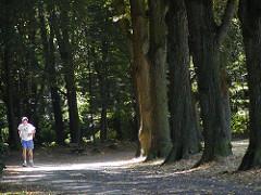 Jogger im Hamburger Volkspark - Bilder aus dem Stadtteil Bahrenfeld