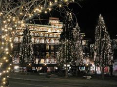Weihnachtlich beleuchtete Bäume in der Hamburger Innenstadt - Weihnachstbeleuchtung von hohen Tannen vor dem Renaissance Hotel Hamburg Neustadt. Weihnachten in der Hansestadt Hamburg.