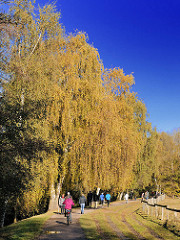 Spazierweg entlang der Kollau in Hamburg Niendorf - blauer Himmel, Bäume in gelben und braunen Herbstfarben - Spaziergänger entlang einer Pferdekoppel.