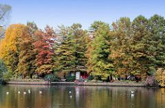 Herbstbäume auf der Liebesinsel im Hamburger Stadtparksee.
