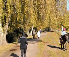 Herbstspaziergang an der Kollau in Hamburg Niendorf - Jogger, Ehepaar beim Spaziergang und Kind auf einem Pony unter Birken im Herbst.