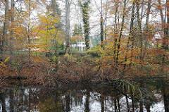 Waldteich mit Herbstbäumen in Volksdorf.