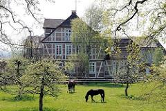 Bauernhaus mit Fachwerk - Pferde auf der Wiese vorm Haus - Hamburgfotos aus den Stadtteilen - HH Francop.