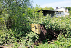 Stillgelegte Güterbahnanlage in Hamburg Wilhelmsburg - ein Prellbock ist mit Grünpflanzen überwuchert.