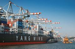 Schiffe im Hamburger Hafen - Containervessels mit Ladung  am Tollerort - Bagger im Hafenbecken bei der Arbeit.