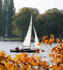 Herbst an der Aussenalster in Hamburg Uhlenhorst; Strauch mit herbstlichen Blättern am Alsterufer - Segelboot unter Segel auf der Alster.