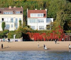 Spaziergänger am Elbstrand in der Herbstsonne - Flutschutzmauer mit Wein bewachsen, Herbstfärbung.