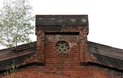 Alte Industriearchitektur in Hamburg St. Pauli - eine junge Birke wächst in den Fugen des Backsteingebäudes.