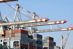 Hamburg Steinwerder - Containerschiff mit Ladung unter den Containerbrücken HHLA Containter Terminal Tollerort.