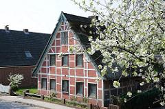 Historisches Bauernhaus - blühender Kirschbaum. Bilder aus dem Bezirk HH-Harburg; Stadtteil Neuenfelde.