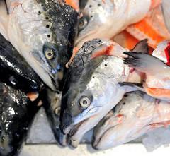 Fischer Fischabfall - Fischköpfe liegen zum Verkauf auf dem Hamburger Fischmarkt aus.
