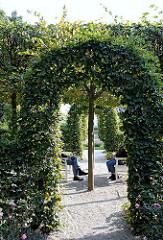 Rosengarten Heckengarten am Elbufer - Motive aus Hamburg Ottensen.