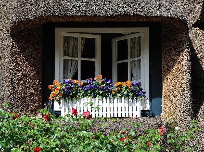 """Bildarchiv Hamburg: Foto """"Fenster mit Blumenkasten und ..."""