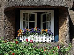 Fenster mit Blumenkasten und blühenden Blumen - Rechteckgaube im Reetdach.